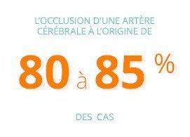 L'occlusion d'une artère cérébrale à l'origine de 80 à 85% des cas