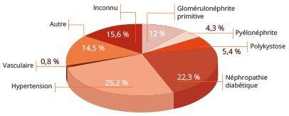 Causes insuffisance rénale : 15,6% inconnu, 12% glomérulonéphrite primitive, 4,3% pyélonéphrite, 5,4 polykystose, 22,3 néphropathie diabétique, 25,2% hypertension, 0,8% vasculaire, 14,5% autre