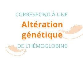 Correspond à une altération génétique de l'hémoglobine