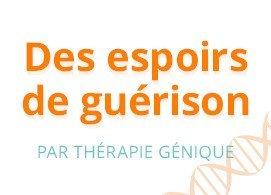 Des espoirs de guérison par thérapie génique