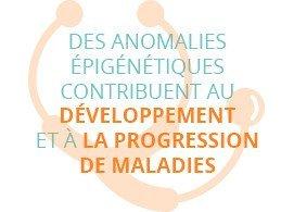 Des anomalies épigénétiques contribuent au développement et à la progression de maladies