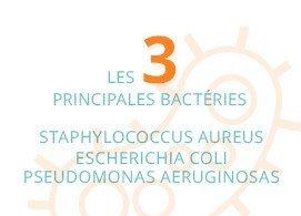 Les 3 principales bactéries : staphylococcus aureus, escherichia coli, pseudomonas aeruginosas
