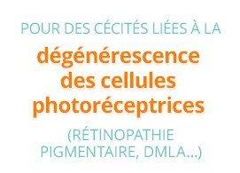 Pour les cécités liées à la dégénérescence des cellules photoréceptrices (rétinopathie pigmentaire, DMLA)