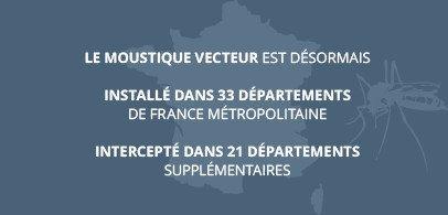 Le moustique vecteur de la dengue Désormais installé dans 33 départements de France métropolitaine  intercepté dans 21 départements supplémentaires