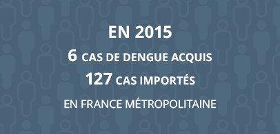 En 2015 6 cas de dengue acquis 127 cas importés en France métropolitaine
