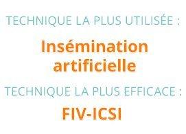 Technique la plus utilisée : insémination artificielle; technique la plus efficace : FIV-ICSI