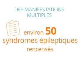 Des manifestations multiples : environ 50 syndromes épileptiques recensés