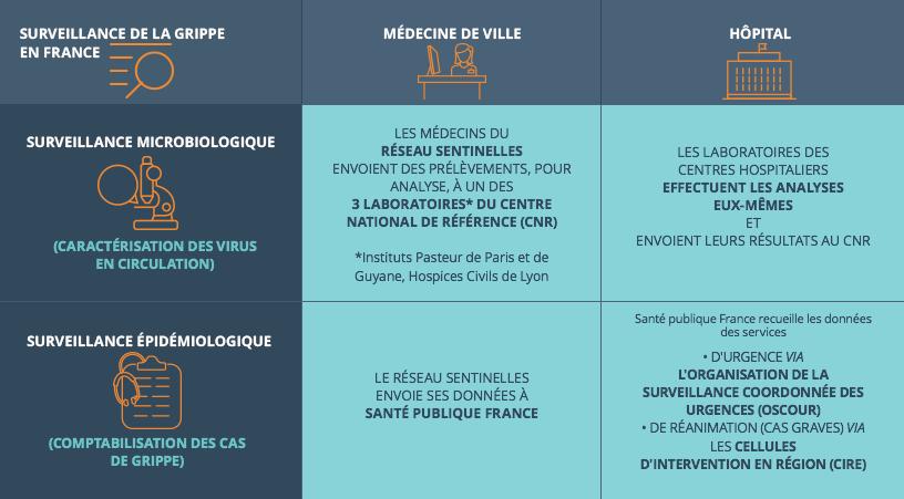 Les réseaux de surveillance de la grippe en France