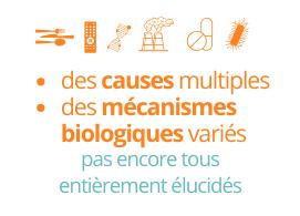 Des causes multiples et des mécanismes biologiques pas entièrement élucidés