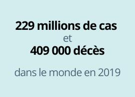 229 millions de cas, 409 000 décès dans le monde en 2019