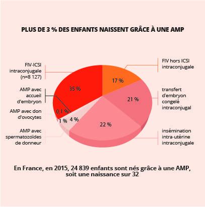 Plus de 3 % des enfants naissent grâce à une AMP : 35 % : FIV-ICSI intraconjugale (n=8 127) 17 % : FIV hors ICSI intraconjugale 21 % : transfert d'embryon congelé intraconjugal 22 % : insémination intra-utérine intraconjugale  4 % : AMP avec spermatozoïdes de donneur 1 % : AMP avec don d'ovocytes 0,1 % : AMP avec accueil d'embryon
