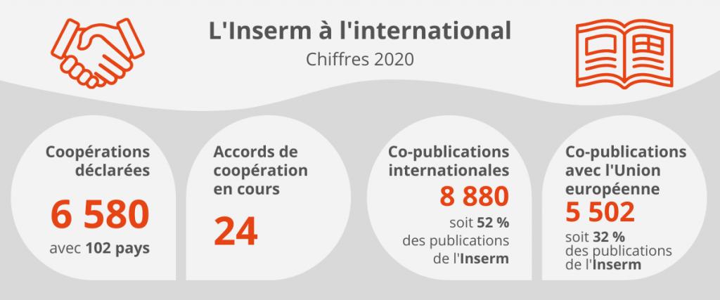 L'Inserm à l'international – Chiffres 2020 Coopérations déclarées : 6 580 avec 102 pays Accords de coopération en cours : 24 Co-publications internationales : 8 880 soit 52% des publications de l'Inserm Co-publications avec l'Union européenne : 5 502 soit 32% des publications de l'Inserm