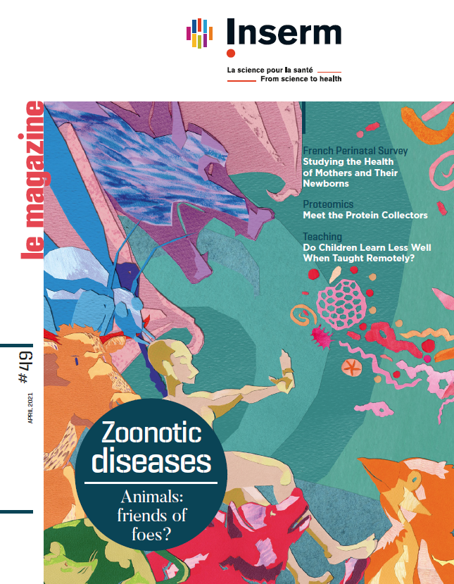 Inserm, le magazine 49 Zoonotic diseases - Animals: friends of foes?