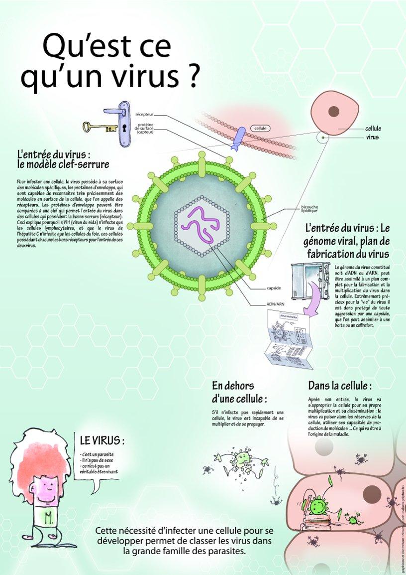 """Exposition """"Découvrir le vaste monde des virus"""" © Inserm"""