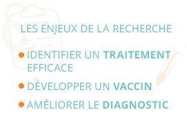 Les enjeux de la recherche : identifier un traitement efficace, développer un vaccin, améliorer le diagnostic