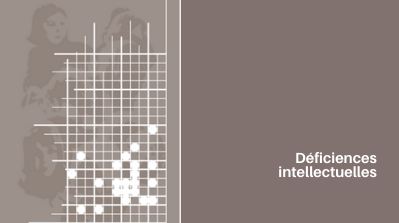 "Expertise collective 2016 ""Déficiences intellectuelles"""