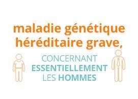 Maladie génétique héréditaire grave, concernant essentiellement les hommes