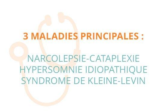 3 maladies principales : narcolepsie-cataplexie, hypersomnie idiopathique, syndrome de Kleine-Levin