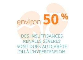 Environ 50% des insuffisance rénales sévères sont dues au diabète ou à l'hypertension