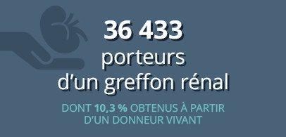 36 433 porteurs d'un greffon rénal dont 10,3 % obtenus à partir d'un donneur vivant